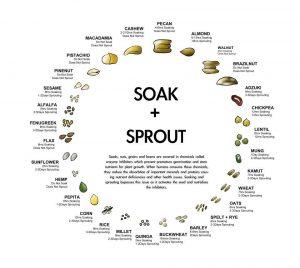 Soaking Reduces Phytic Acid Nutritional Impact